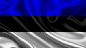 доставка товаров из Эстонии в Россию