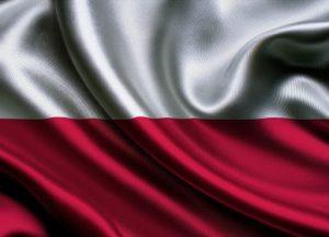 доставка из Польши в Россию